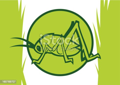 istock Clipart light green katydid inside a circle with grass 165769707