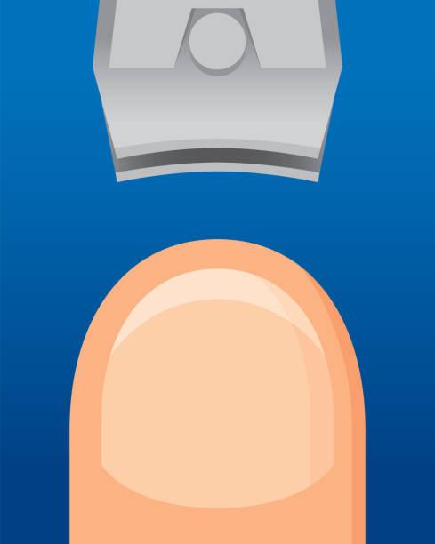 clipping-nagel - fußpflegeprodukte stock-grafiken, -clipart, -cartoons und -symbole