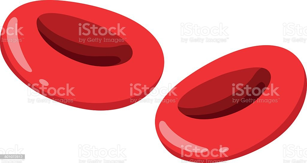 Close  red blood cells vector art illustration
