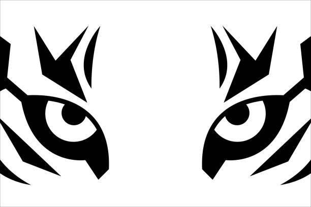 illustrations, cliparts, dessins animés et icônes de fermez-vous vers le haut des yeux du tigre - tigre