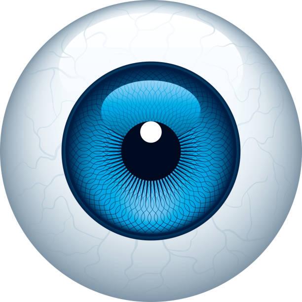 ilustraciones, imágenes clip art, dibujos animados e iconos de stock de foco circular - ojos azules