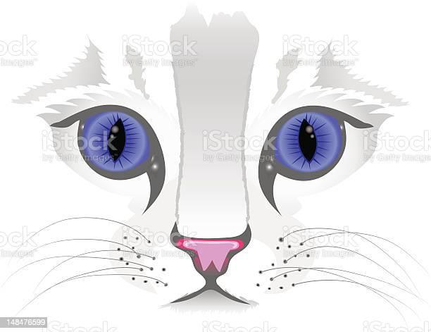 Close up of cat face vector id148476599?b=1&k=6&m=148476599&s=612x612&h=gbhilbfemwzzla 7tns8c0kku zau53mpkomh68swz4=