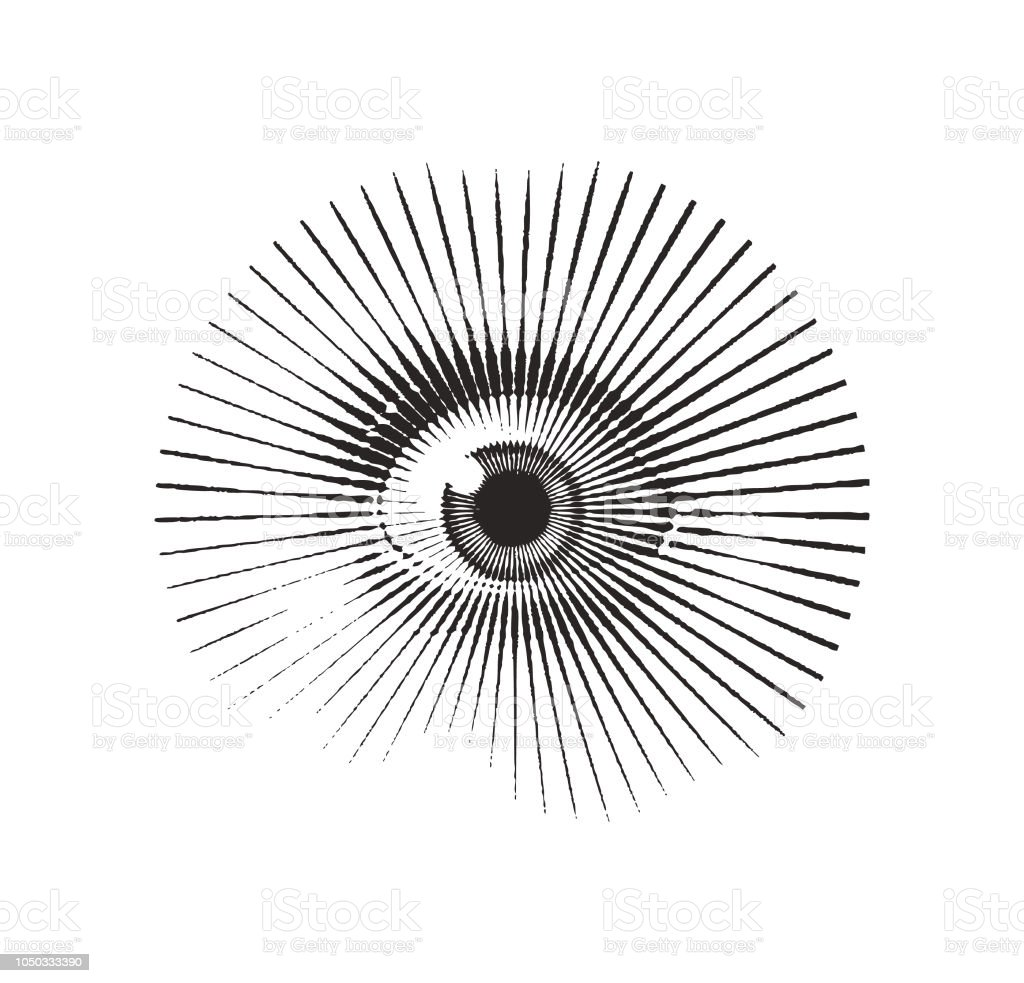 Close up of eye with frightened expression - Векторная графика Без людей роялти-фри