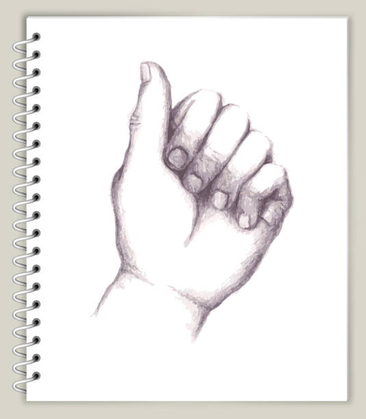Closed Hand Drawing on Art Sketcbook royalty free vector art Closed Hand Drawing on Art Sketchbook royalty free vector art. This illustration features a pencil sketch on white paper background. The spiral sketchbook is on beige background. The line art is detailed and realistic. Icon download includes vector art and jpg file. biofeedback stock illustrations