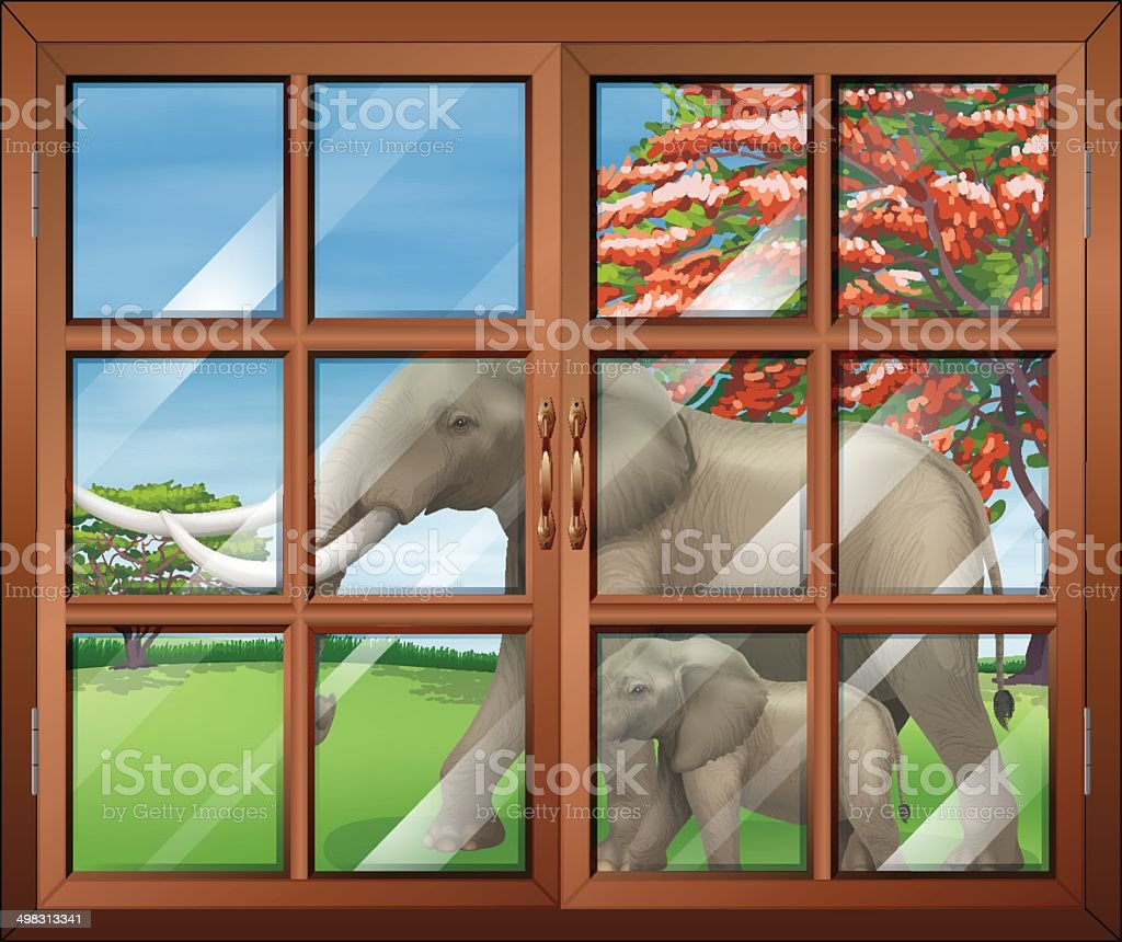 Closed window with a view of the two elephants outside vector art illustration