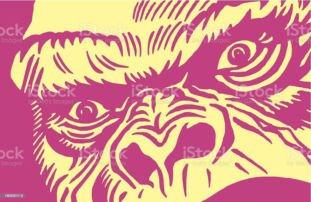 Close-up of a Gorilla vector art illustration