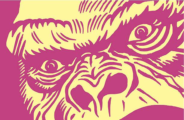 クローズアップの Gorilla ベクターアートイラスト