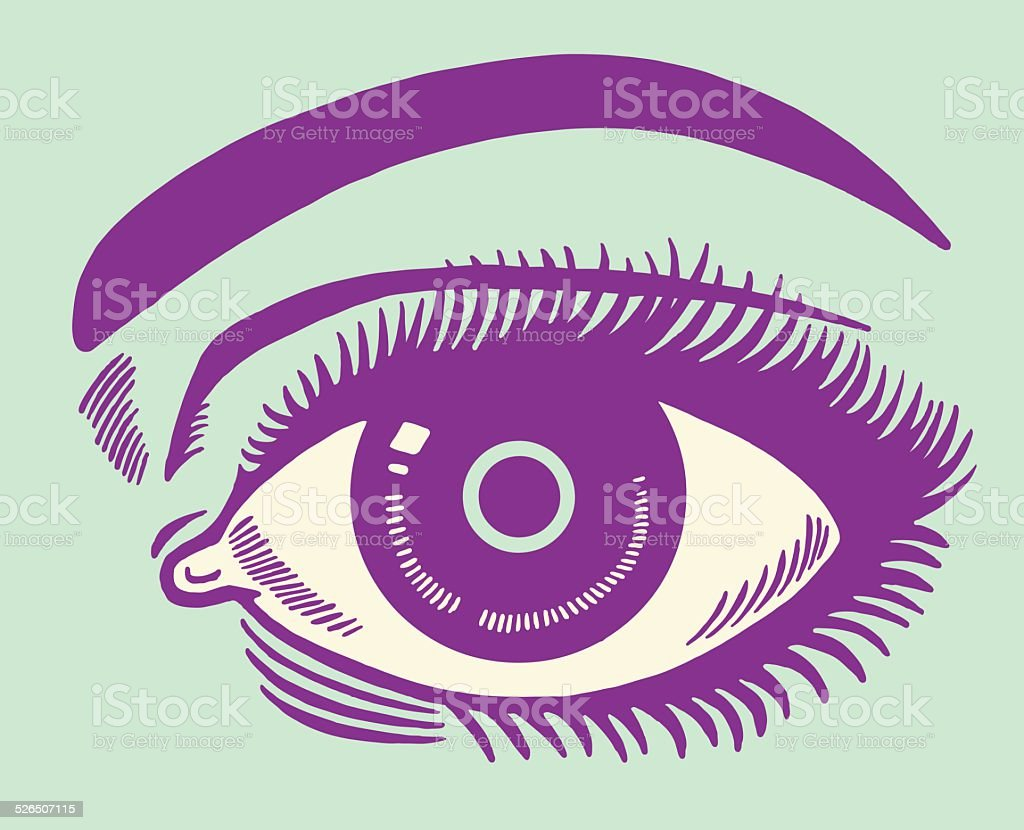 Closeup of an Eye vector art illustration