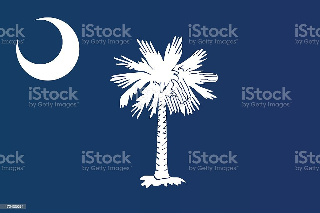 Close-up of flag of South Carolina  vector art illustration