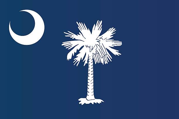 Close-up of flag of South Carolina  Flag of South Carolina south carolina stock illustrations
