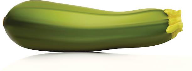 zucchini - flaschenkürbis stock-grafiken, -clipart, -cartoons und -symbole