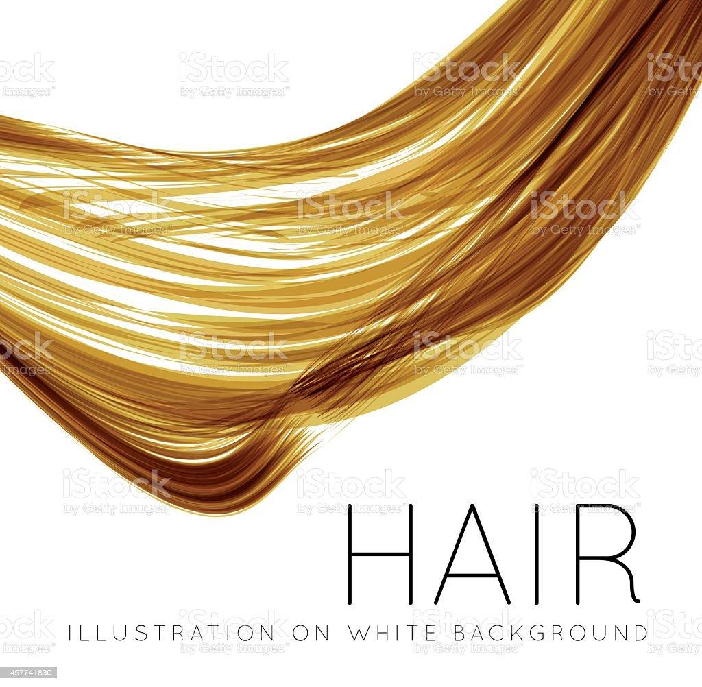 Closeup of long human hair vector art illustration