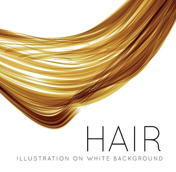 nahaufnahme von long menschliches haar - langhaar stock-grafiken, -clipart, -cartoons und -symbole