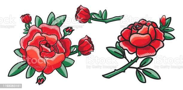 Closeup of red rose on poster vector illustration vector id1193083151?b=1&k=6&m=1193083151&s=612x612&h=0csigvlkk dsnqwzqsy6jzah4ms3jgzwhrqvmlpw2pc=