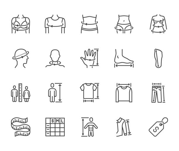 clothes size flat line icons set. body measurement waist circumference, hip, chest, sleeve length, height vector illustrations. outline signs clothing sizes table. pixel perfect 64x64 editable stroke - talia tułów stock illustrations