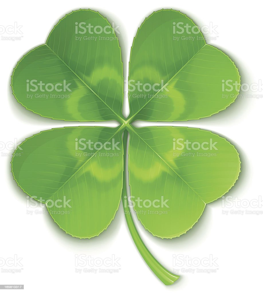 Clover vector art illustration