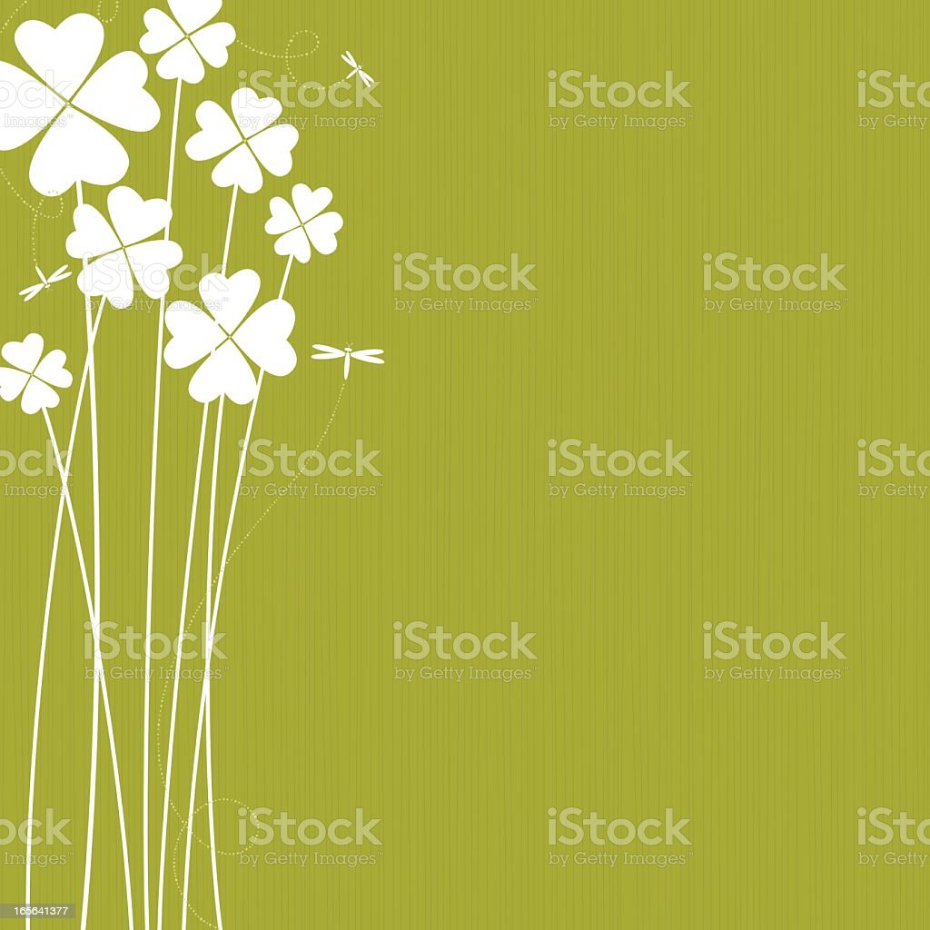 Clovers with white green colors vector art illustration