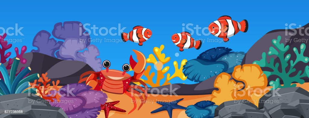 Clownfish and crab under the ocean vector art illustration