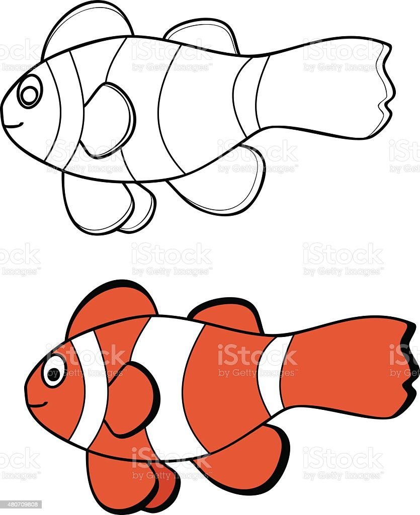 Clownfish Stock Vector Art & More Images of 2015 480709808 | iStock