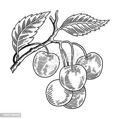 Clump of Cherries