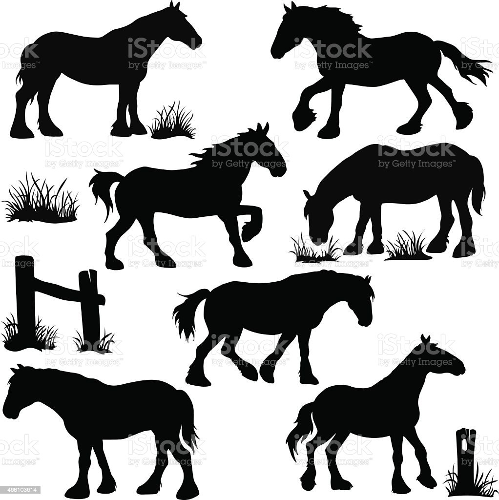 Clydesdale Horse Silhouettes vector art illustration