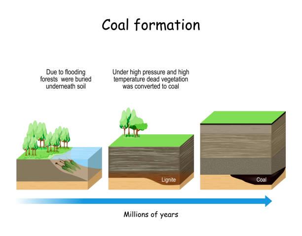 ilustrações de stock, clip art, desenhos animados e ícones de coal formation - alter do chão
