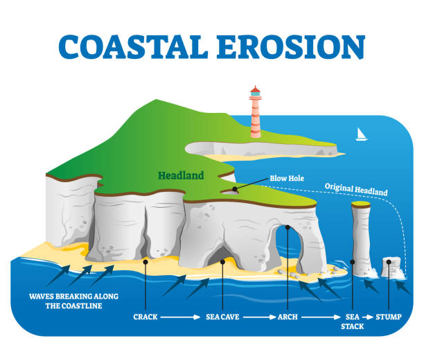 Coastal erosion vector illustration. Labeled loss or displacement of land. Coastal erosion vector illustration. Labeled loss or displacement of land scheme with headland, blow hole, stump, arch, cave and crack examples. Water force and power phenomenon in geological aspect. headland stock illustrations