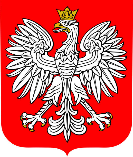 coat of arms of poland - polska stock illustrations