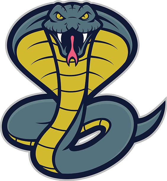 Kobra Schlange Maskottchen – Vektorgrafik