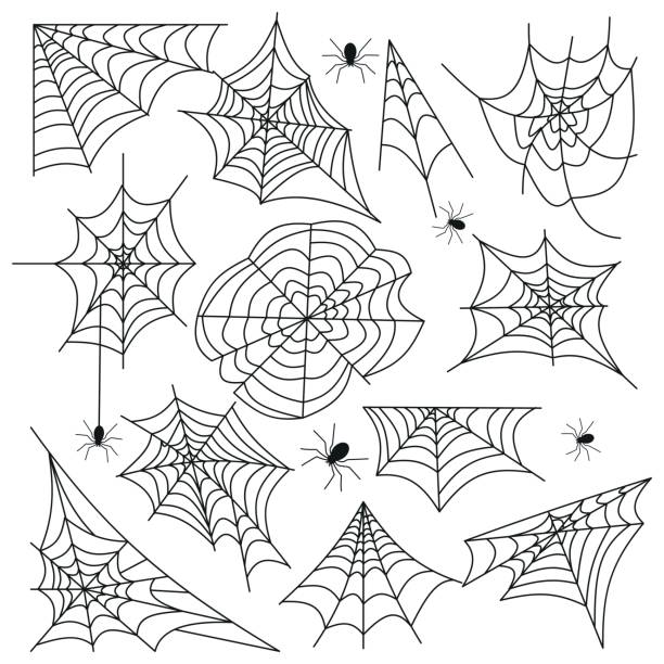 cobweb set spider web halloween black vector - halloween stock illustrations, clip art, cartoons, & icons