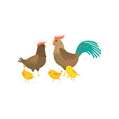 Cock, hen and three yellow chickens in yard on white. Chicks running, eating, singing, father rooster and mother look at each other. Happy family concept. Easter farm birds collection in flat style
