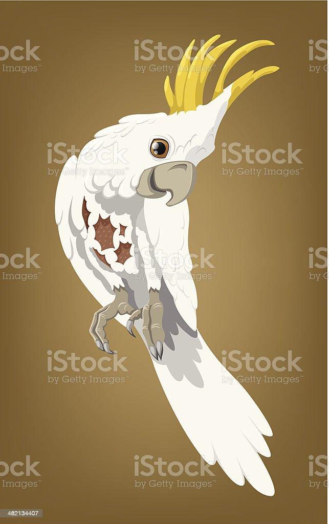 Cockatoo - at the vet vector art illustration