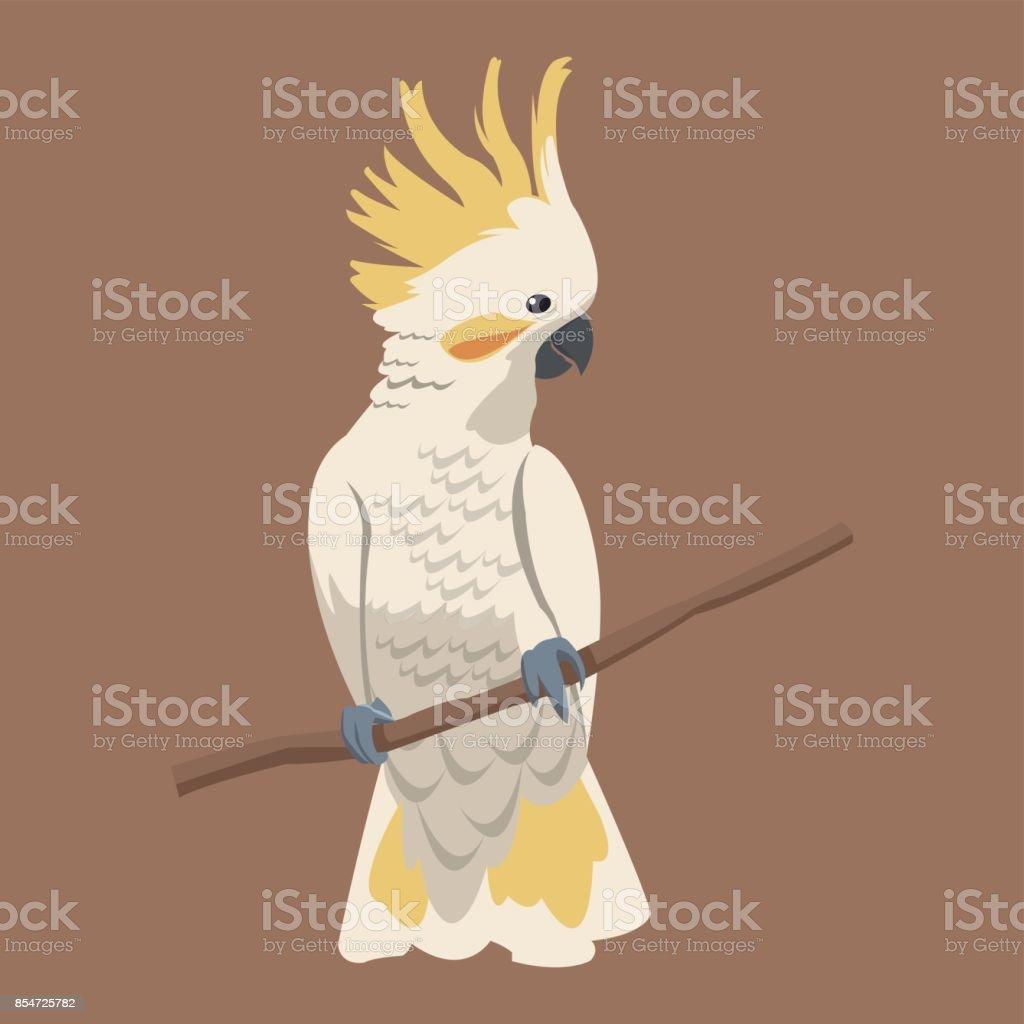 cockatoo bird exotic branch vector art illustration