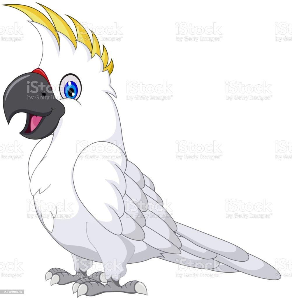 cockatoo cartoon posing vector art illustration