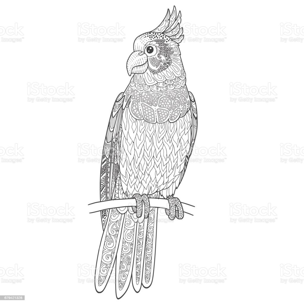 Cockatoo parrot line contour with doodle ornament for adult coloring book. royalty-free cockatoo parrot line contour with doodle ornament for adult coloring book stock vector art & more images of bird