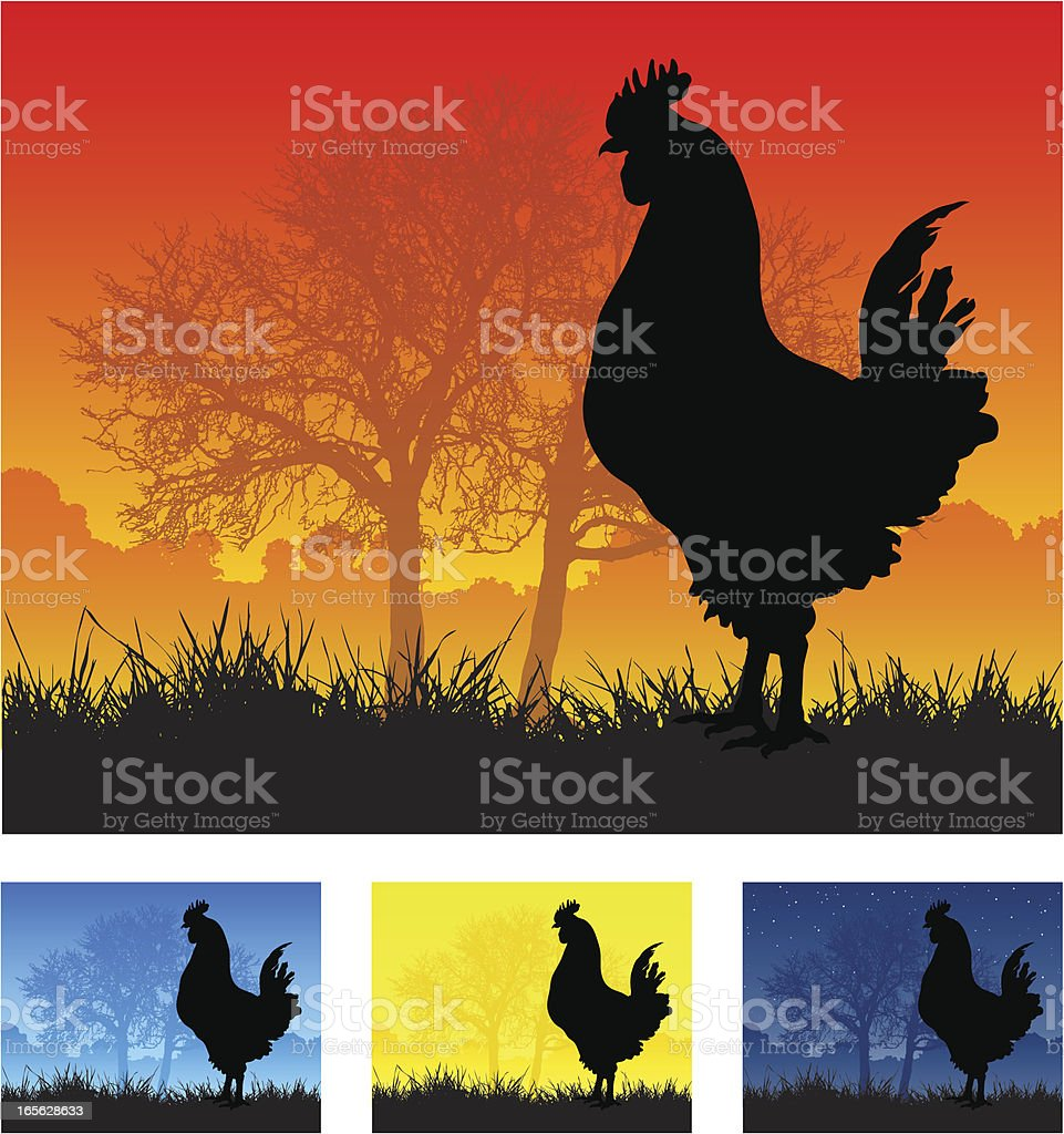 Cockerel silhouette royalty-free stock vector art