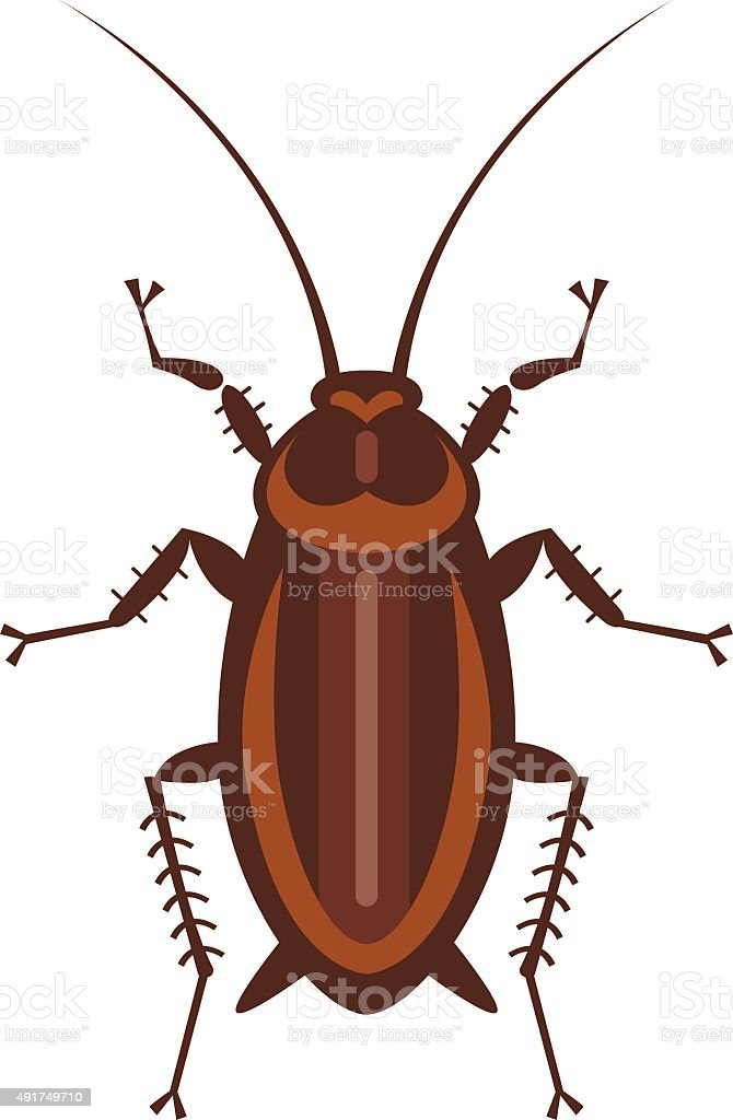 cockroach in pure style vector art illustration