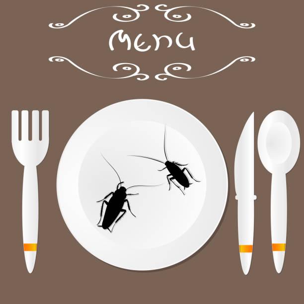 kakerlaken auf einer platte in einem restaurant. kakerlaken-menü. vektor - aerial overview soil stock-grafiken, -clipart, -cartoons und -symbole