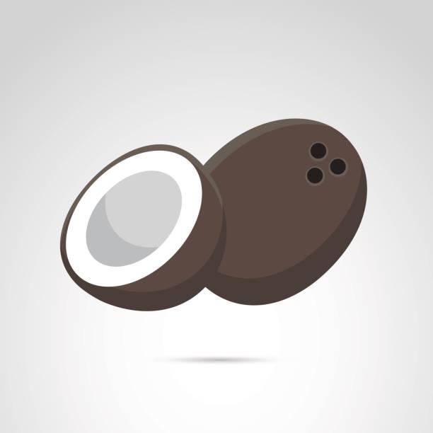 Icono de coco aislado en fondo blanco. - ilustración de arte vectorial