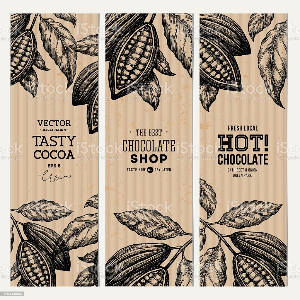 Cocoa bean tree banner collection. Design templates. Engraved style illustration. vector art illustration