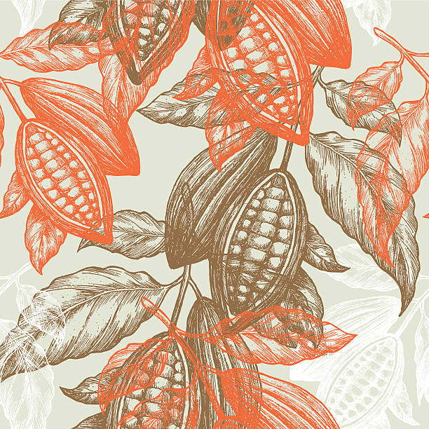 stockillustraties, clipart, cartoons en iconen met cocoa beans seamless pattern. cocoa tree illustration. chocolate cocoa beans. - cacaovrucht