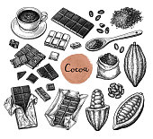 Cocoa and chocolate set. Ink sketch isolated on white background. Hand drawn vector illustration. Retro style.