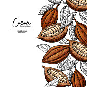 Cocoa frame. Vector superfood drawing template.  Fruit, leaf and bean engraving. Organic healthy food sketch. Hand drawn chocolate packaging, cacao banner, poster, label. Isolated illustration on white background.