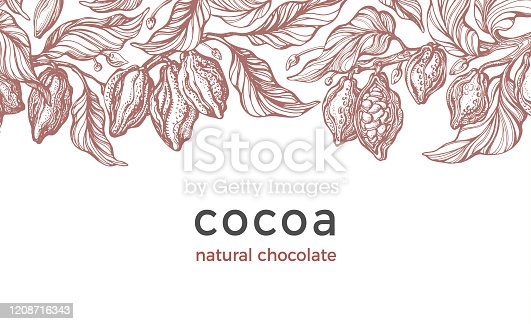 istock Cocoa harvest. Vector background. Art drawn card 1208716343