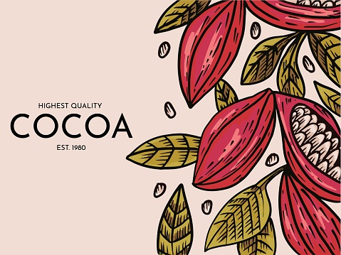 Cocoa label pattern for packaging vector illustration