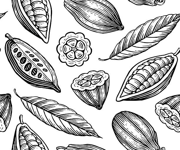 cocoa pattern - plant pod stock illustrations