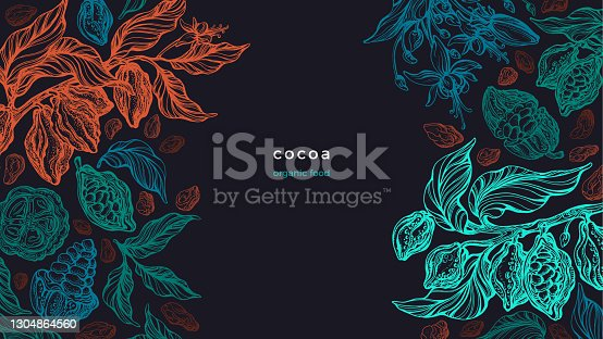 istock Cocoa plant Vector graphic background Aroma butter 1304864560