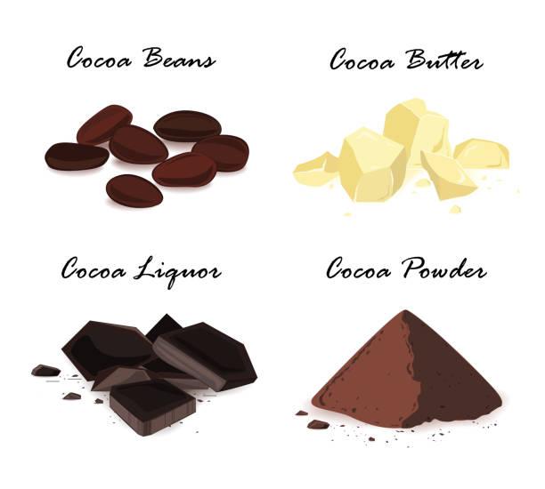 Cocoa products. Cocoa beans, cocoa butter, cocoa liquor and powder. Vector set. Super food cocoa beans and their products. Cocoa beans, cocoa butter, cocoa liquor and powder. Vector set. hot chocolate stock illustrations