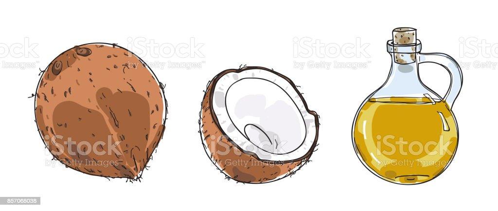 arte ilustración de vectores dibujados a mano de coco y aceite de coco - ilustración de arte vectorial