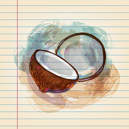 Coconut Drawing on Ruled Paper